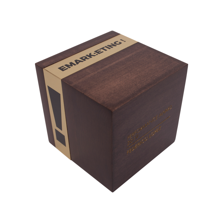 Marketing award sleek wood cube